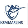 BSM Marlins swimming club