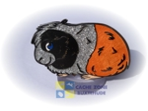 Guinea Pig Geocoin