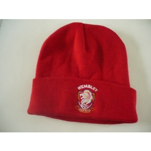 WFC Beanie hat