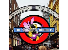 The Complete Slingsby Hornets