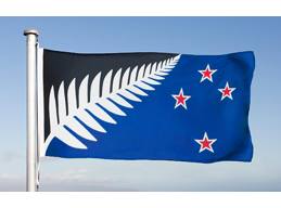 C | MEDIUM SILVER FERN FLAG