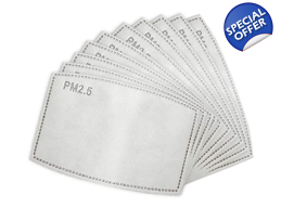 G | SILVER FERN FLAG MASK FILTERS 10 PACK